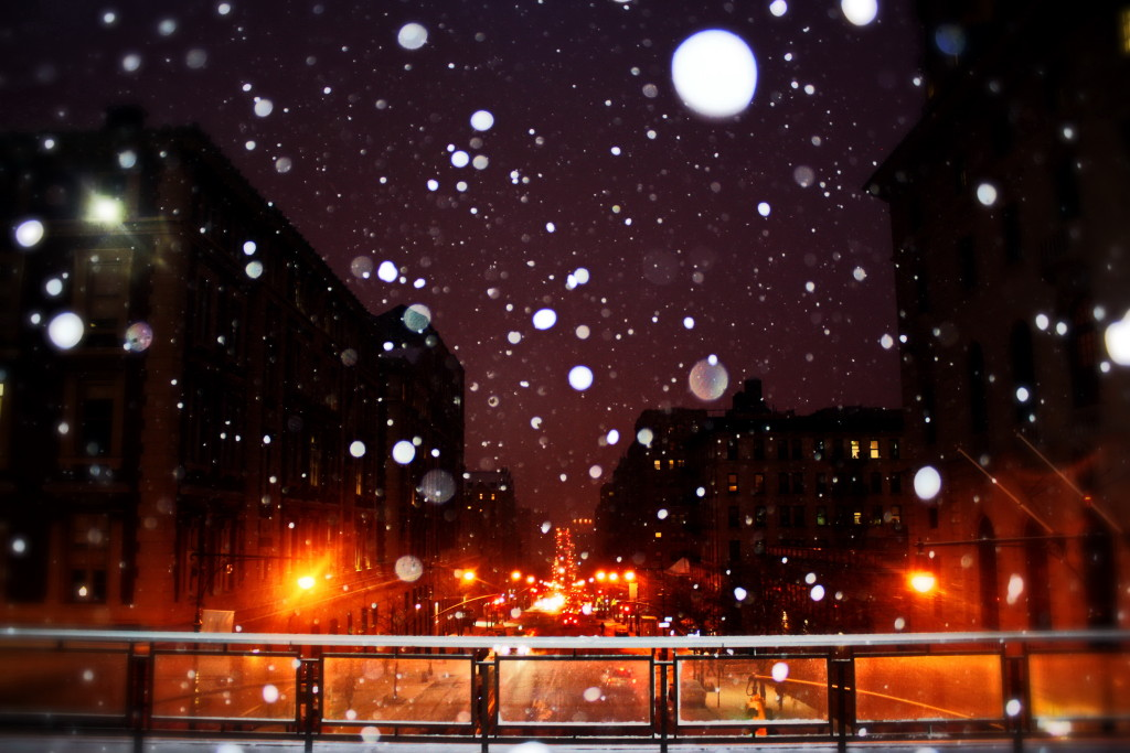 Chang Hee Han - Winter in New York 4